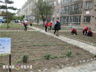 1050.东望志愿者服务中心为白山社区除草绿化