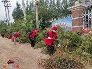 1172.志愿者帮助白山社区居民清理平房区杂草